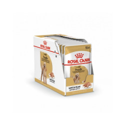 Mousse Royal Canin Caniche Adulte