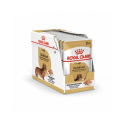 Mousse Royal Canin Teckel Adulte