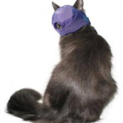 Muselière de contention pour chat