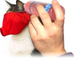 Muselière de contention Mus-cat™ pour chat T2 Medium rouge chat  de 2.7 à 5 kg