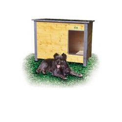 Niche chien isolée confort toit simple pan Mini