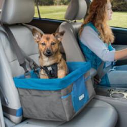 Panier chien pour voiture Booster Seat bleu