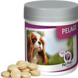 Pet Phos spécial pelage pour chien Boite de 50 comprimés