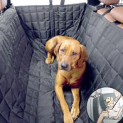 Plaid de protection siège automobile Allside-Comfort pour transport de chien