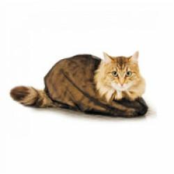 Sac filet de toilettage standard et soin pour chat Small/Medium chat jusqu'à 4.5 kg