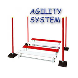 Saut en longueur Agility System pour sport canin