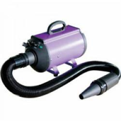 Séchoir pulseur portable 2200 watts Blizzard