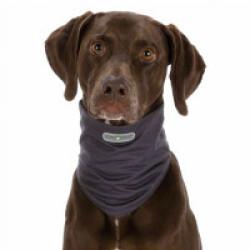 Tour de cou gris antiparasitaires pour chien Insect Shield L