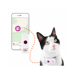 Traceur GPS pour chat Weenect Cats 2