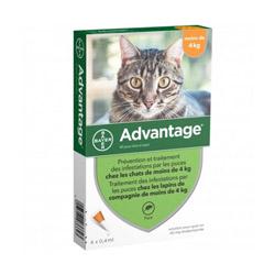 Advantage 40 Anti-puces pour chats < 4 kg Boîte 4 Pipettes