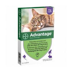 Advantage 80 Anti-puces pour chats > 4 kg Boîte 4 Pipettes