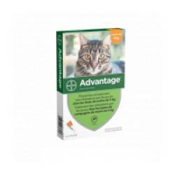 Traitement antiparasitaire pour chats Advantage 40 moins de 4 kg Boîte de 6 Pipettes