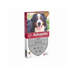 Advantix traitement anti tiques et puces pour chien Spot On Chien 40 à 60 kg (4 pipettes 6 ml)