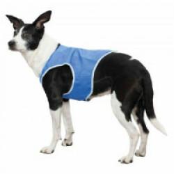 Veste rafraîchissante Trixie pour chien