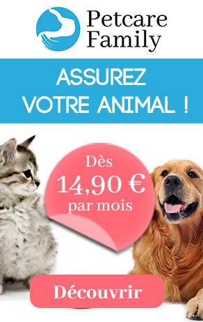 Petcare Family Assurance