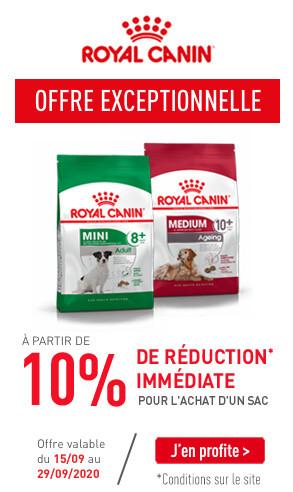 Opération Royal Canin 15.09 au 22.09 chien mature