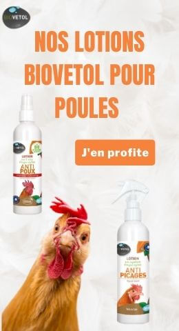 Vignette Biovetol dans cat élevage