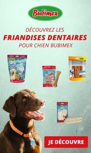 friandises dentaire bubimex