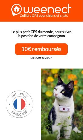 Opé weenect juin 2021 chat